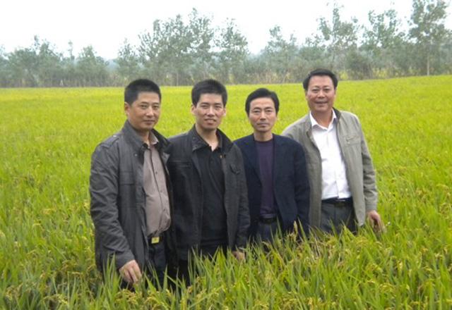 宝应湖米厂考察大米加工及稻谷生产基地情况,赵长浩厂长及农场夏永龙